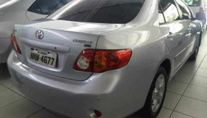 Corolla4.png